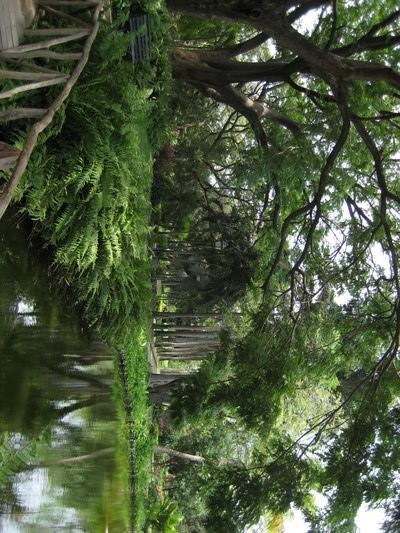 Quinta de San Pedro Alejandrino, Santa Marta