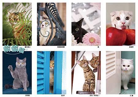 偷偷貓封面.jpg