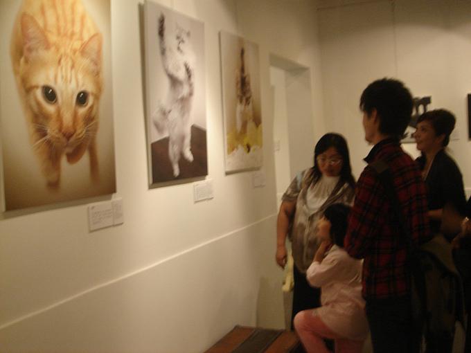 20101006猫摄影展 033.jpg