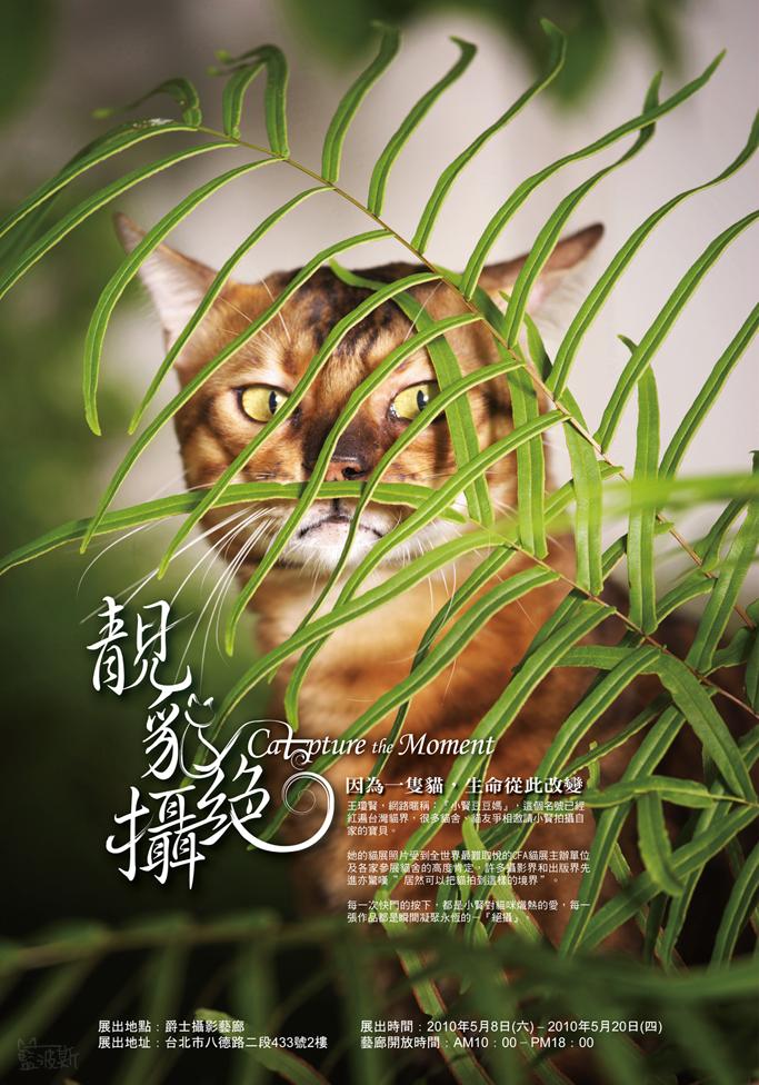 靚貓絕攝S2010.jpg