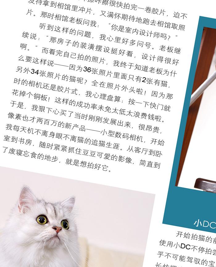貓咪開麥拉-04.jpg