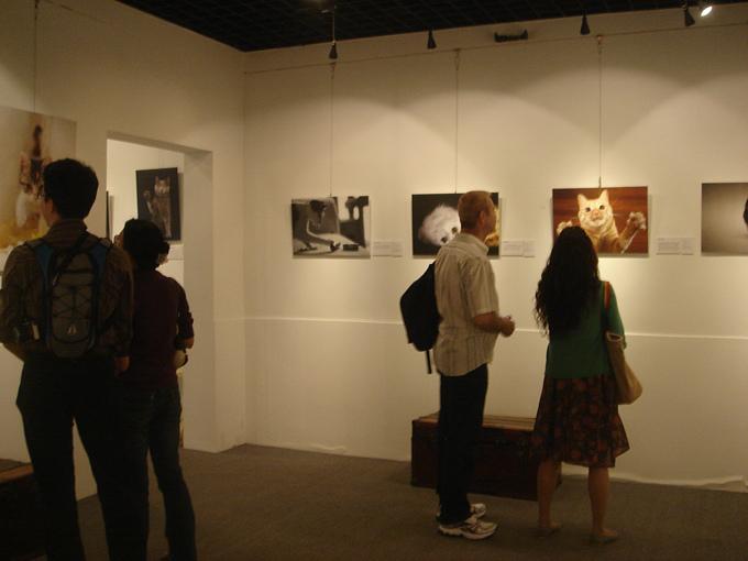 20101006猫摄影展 038.jpg