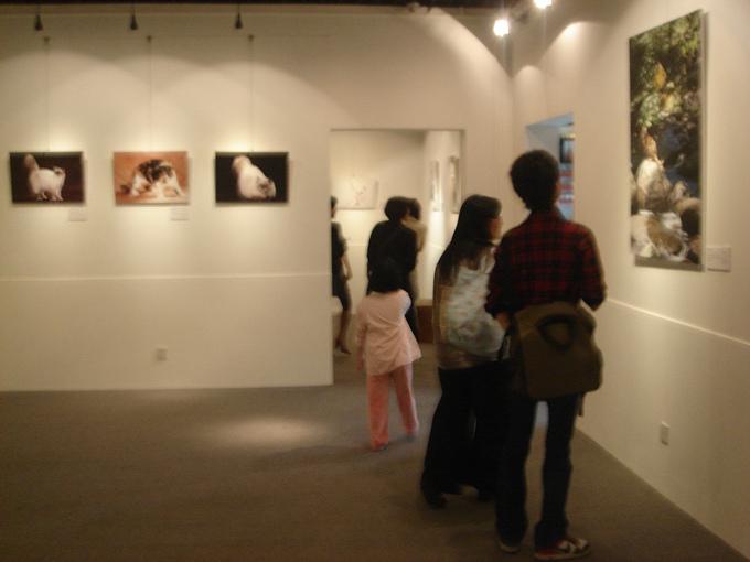 20101006猫摄影展 028.jpg
