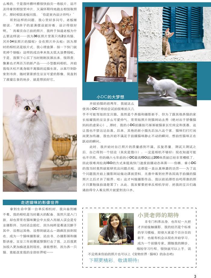 貓咪開麥拉-02.jpg