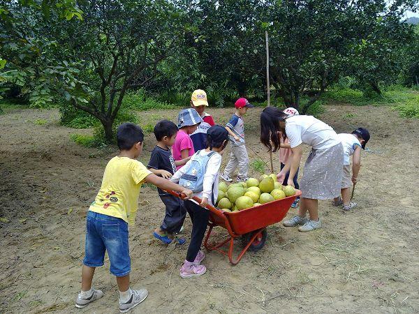 採柚子 062.jpg