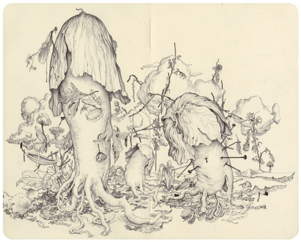 moleskine-mushrooms_full.JPG