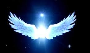 天使翅膀-08.jpg