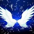 天使翅膀-06.jpg