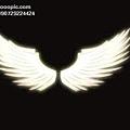 天使翅膀-05.jpg