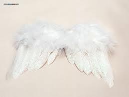 翅膀-01.jpg
