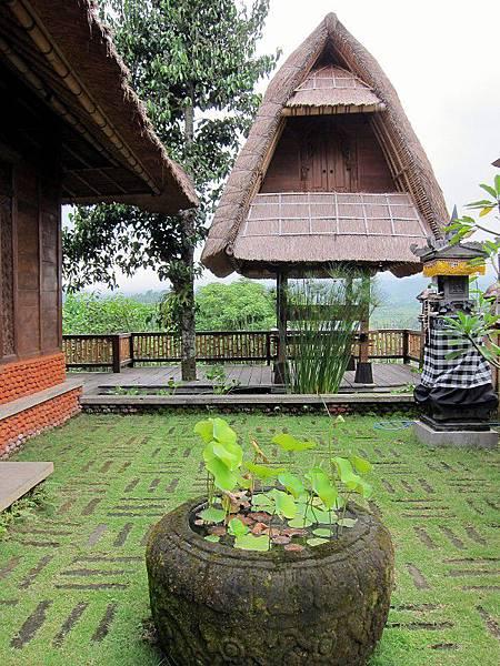 Bali Asli 019