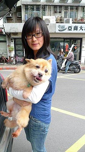 代辨寵物出國檢疫_三貓一犬出國去_寵物出國_大陸_上海、蘇州、廣州篇
