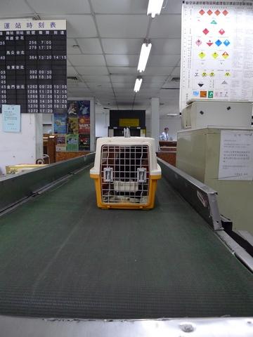 P1030572.JPG