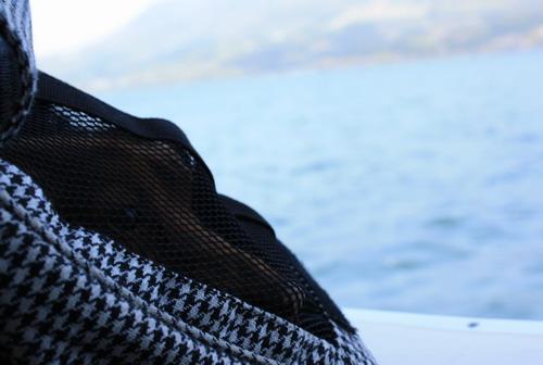 盧之湖4.jpg