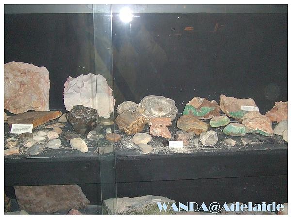 2008-08-24_展示櫃.JPG