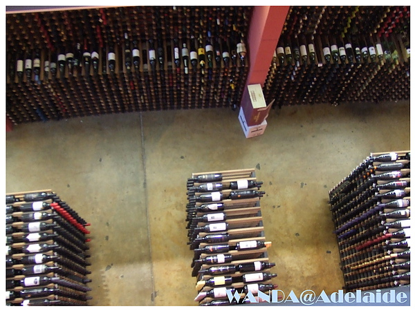 2008-07-04_WINE CENTER_室內酒窖.JPG