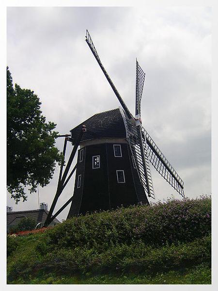 20050623-5.jpg