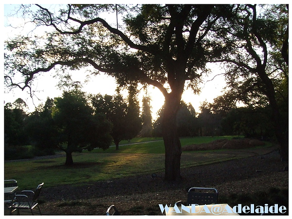 2008-07-04_WINE CENTER_庭園風景.JPG