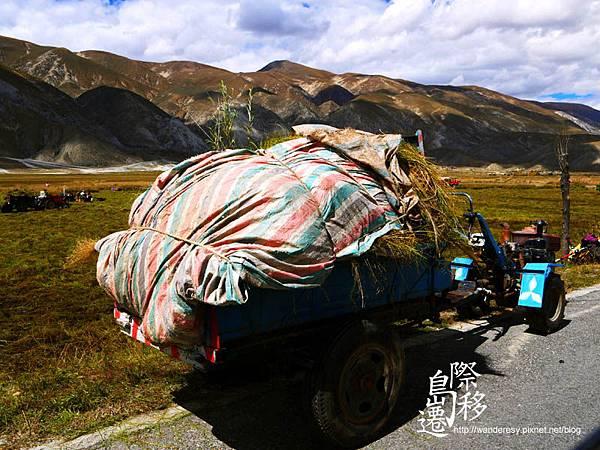 tibet08.jpg