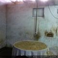 在鐵鍋內蒸熱的苦茶籽粉