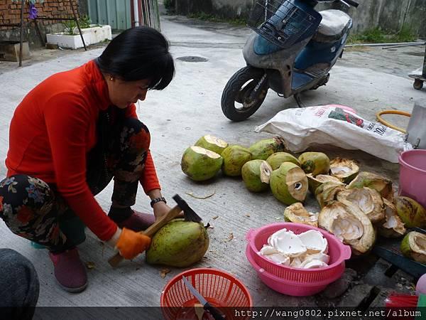 阿惠用斧頭砍椰子
