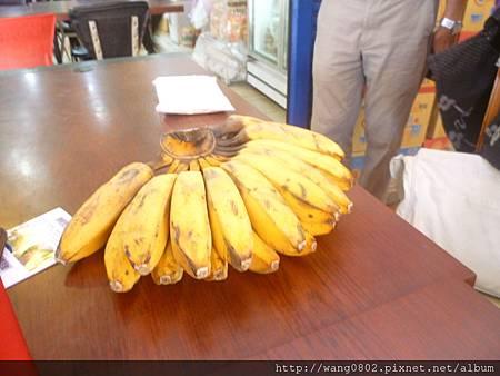 印尼種的芭蕉.JPG