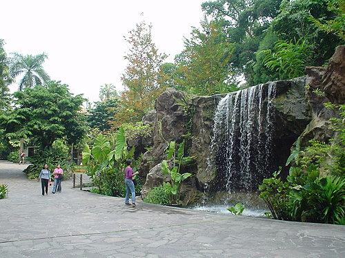 076-植物園內一景