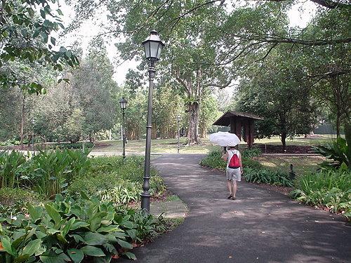 074-最後一天:植物園