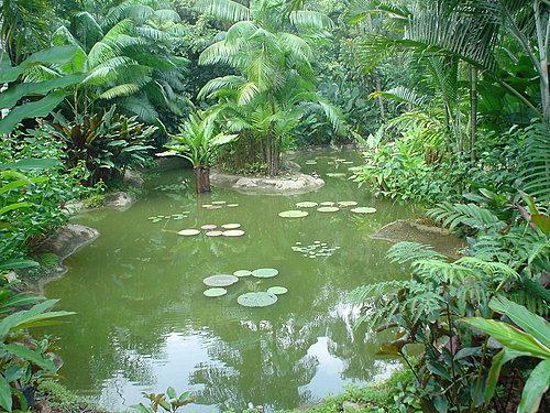 078-植物園內一景
