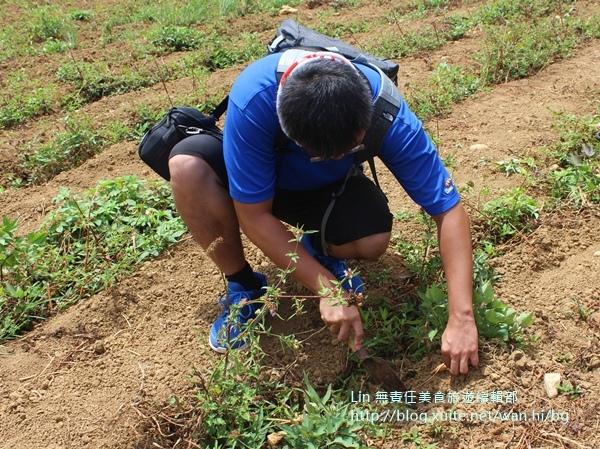 IMG_0240.JPG - 三芝農家樂