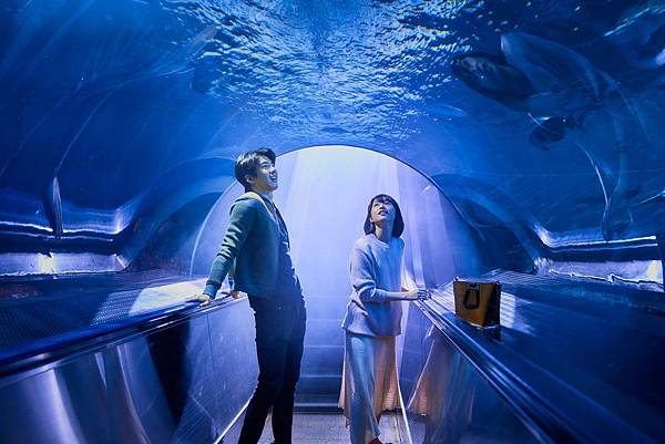 《你的情歌》傅孟柏、柯佳嬿「海底約會」超浪漫