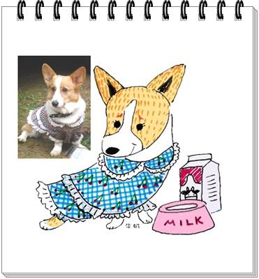 牛奶01拷貝.jpg