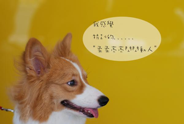 09生日03.jpg