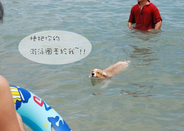 夏初01.jpg