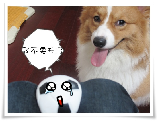足球王子 040.jpg