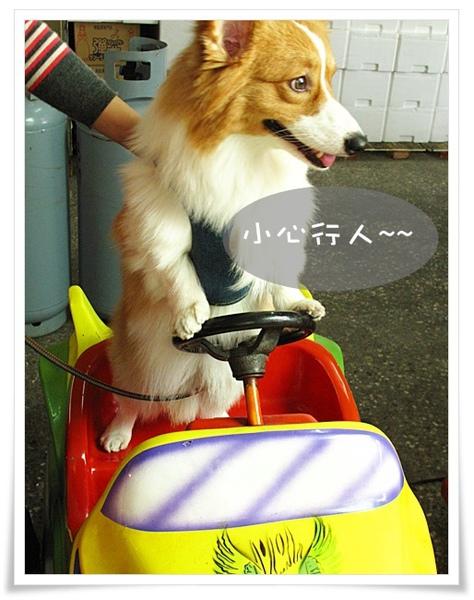 開車02.jpg