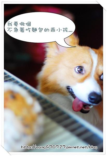 2010.04做麵包 007.jpg