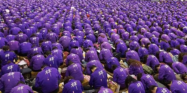 紫衣紫衣.jpeg
