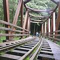 水山巨木-仿古木吊橋.JPG