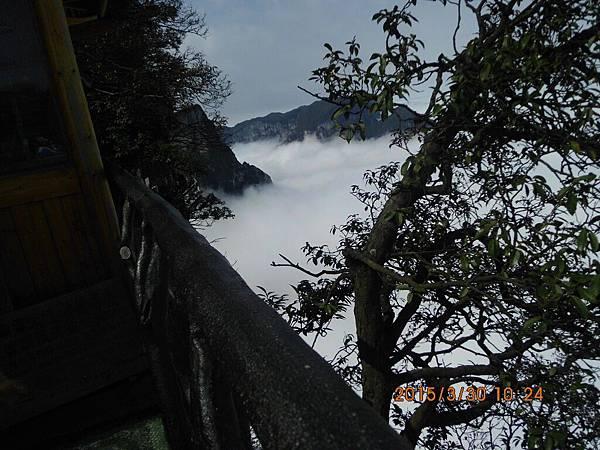 湖南楊家界 (82)