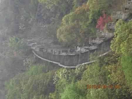 湖南楊家界 (4)