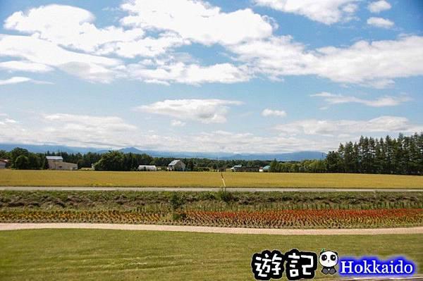 北海道07.jpg