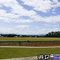 北海道65.jpg