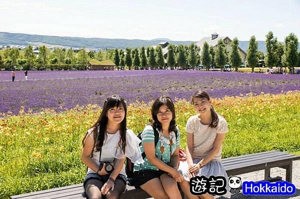 富良野FLOWER LAND花田11
