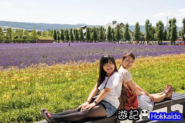 富良野FLOWER LAND花田12