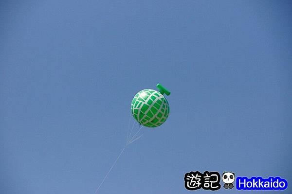 富良野FLOWER LAND花田17