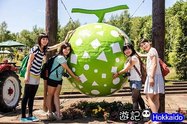 富良野FLOWER LAND花田20