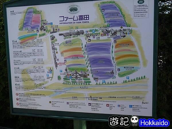 富良野FLOWER LAND花田25