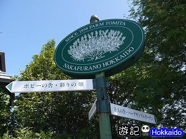 富良野FLOWER LAND花田26