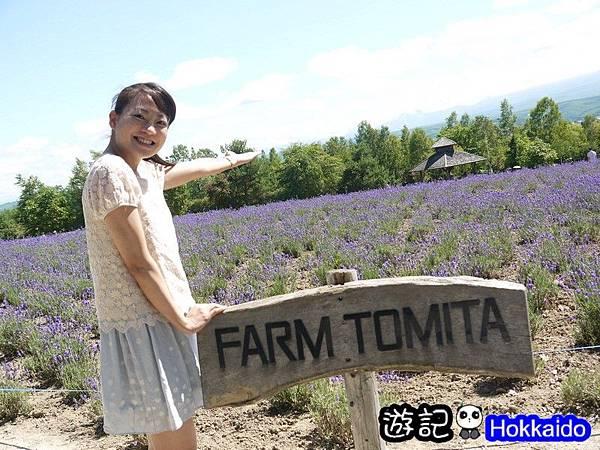 富良野FLOWER LAND花田49